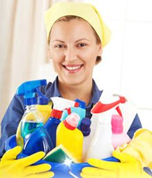 domestic_cleaner