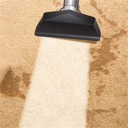 Carpet Clean London